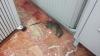 Rata cazada el pasado noviembre por los agentes del cuartel de Pinto