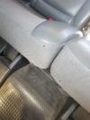 En esta imagen pueden observarse dos garrapatas en los asientos del vehículo.