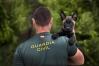 Un guía cinológico de la Guardia Civil con un cachorro.