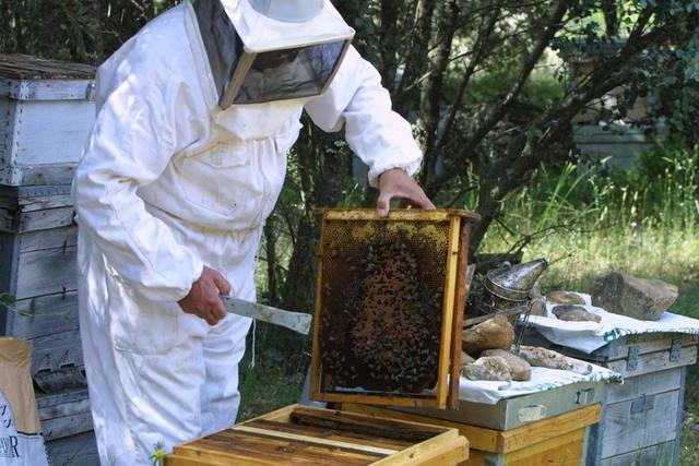 Uno de los guardias civiles había solicitado compatibilizar su trabajo con la apicultura.