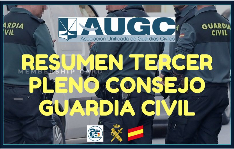 Resumen Pleno del Consejo de la Guardia Civil.